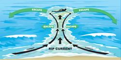 LBI Beach Information